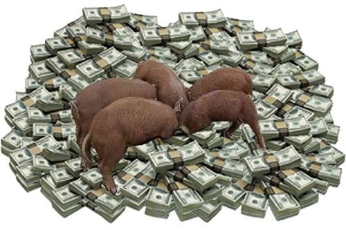 money_pigs2